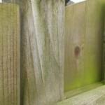 Groene aanslag op verharding en hout, wat doe je er aan?