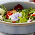viooltje salade